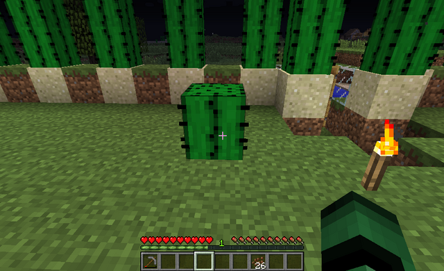 File:Cactus On Grass 2.png