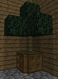 Indoor tree 2