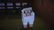 Mcsm ep5 sheep