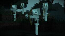 Skeleton3