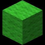 Lime Wool