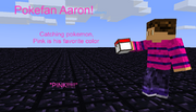 Pokefan Aaron!