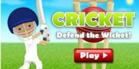 Cricket Defend the Wicket