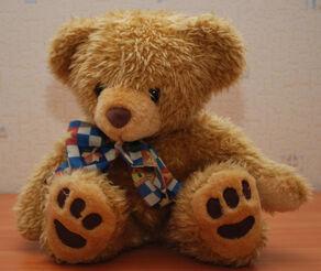 Teddy Bear 45 flash