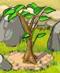 Tree Lvl-2