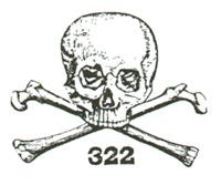 File:Skullflag.jpg