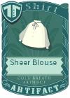 Sheer Blouse Grey