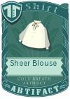 Sheer Blouse Brown
