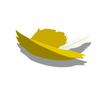 Yellow Cavalier Hat