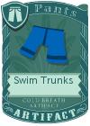 Swim Trunks Blue