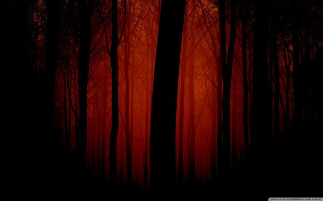 File:Bloody forest 600x375.jpg