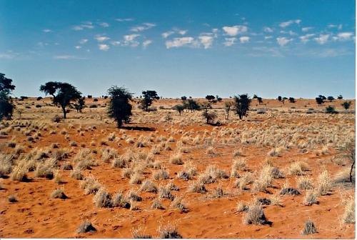 File:Kalahari desert.jpg