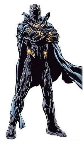 File:Black panther.jpg