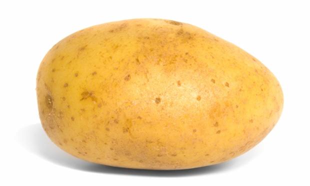 File:Potato.jpeg