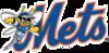 Binghamton Mets Logo