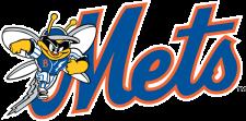 File:Binghamton Mets Logo.png