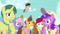 Ponies looking blankly at Twilight Sparkle S7E14.png