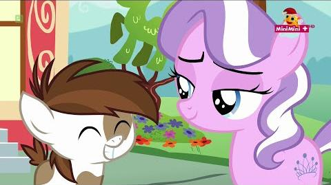 The Pony I Want to Be (reprise) Polish