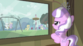 Diamond Tiara looking out through the window S2E23.png