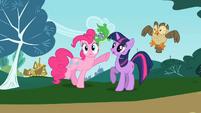 Pinkie Pie and Twilight S02E07