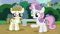"Sweetie Belle ""what do you see?"" S7E6.png"