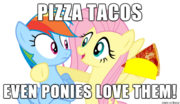 FANMADE Pizza Tacos for ponies meme
