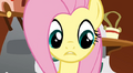 Fluttershy is confused S2E19.png