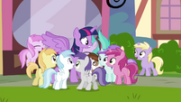 Foals surrounding Twilight S4E15