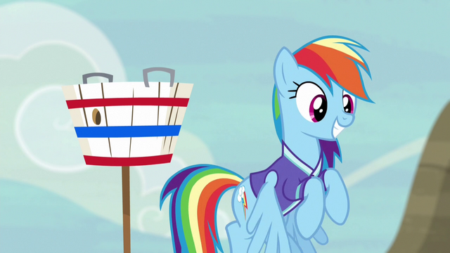 File:Rainbow Dash ready to play buckball S6E18.png
