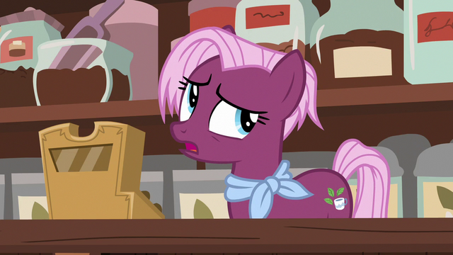 """File:Tea salespony """"you seem so very different"""" S7E12.png"""