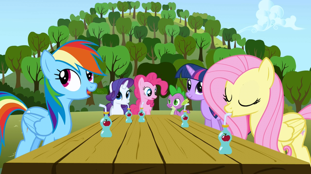File:5 main ponies and Spike S01E04.png