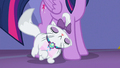 Opalescence nuzzling Twilight's hooves S6E22.png