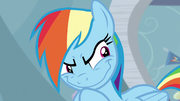 Rainbow Dash's Grinch smile S05E05