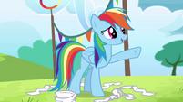 Rainbow Dash chooses Ponyville S4E10
