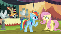 Rainbow tells Fluttershy to stand guard S4E22