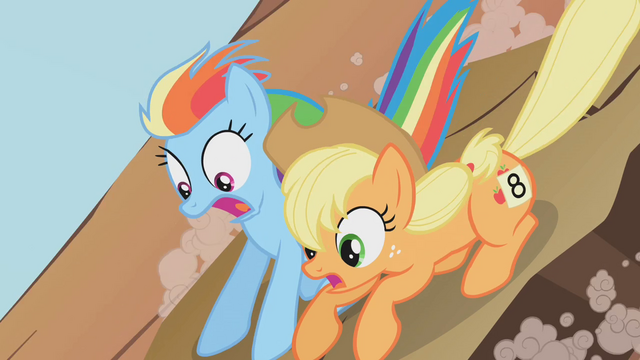 File:Applejack and Rainbow Dash1 S01E13.png