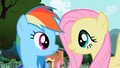 Fluttershy looking at Rainbow Dash S2E07.png
