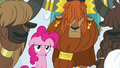 Pinkie Pie looks annoyed while swaying S7E11.png