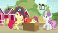 Apple Bloom and Sweetie Belle putting on costumes S7E8.png