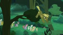 Coco Crusoe drops down from the tree branch S5E26