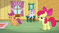 Apple Bloom 'I'm related to such a big stinkin' bully' S3E04.png