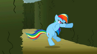Rainbow Dash wants to fight Discord S02E01