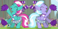 Cloudsdale Cheer Ponies