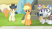 "Applejack ""this has got to stop!"" S4E20"