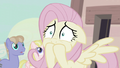 Fluttershy closes her mouth S5E02.png