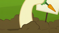 Hooffield mare making hole in the ground S5E23.png