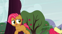 Babs sees Apple Bloom fall S3E08