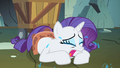 Rarity continues to cry on the floor S1E19.png