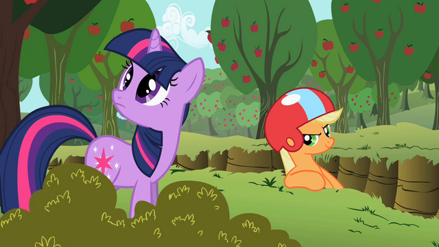 File:Applejack 'I'd take cover if I were you' S2E3.png