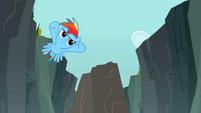 Rainbow Dash flying around a rock S2E07